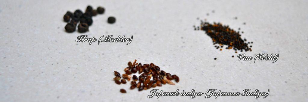 seeds_txt